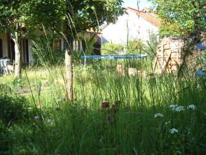 2012-06-Garten 001